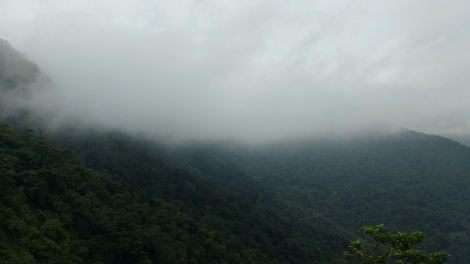 Beauty of western ghats