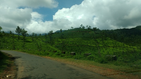 Road to Suchipara waterfalls.