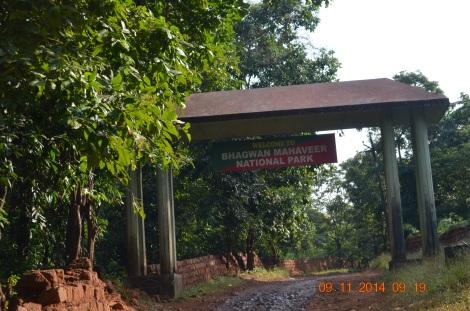 Goa has many wild life sanctuaries