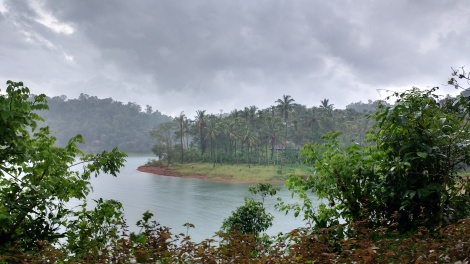 Beauty of monsoons in Kerala.